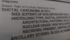 Pathology Result from the biopsy.